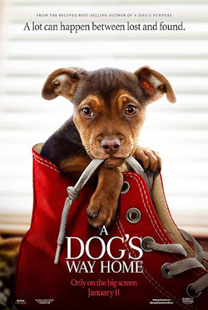 Poster Of A Dog's Way Home 2019 In Hindi Bluray 720P Free Download
