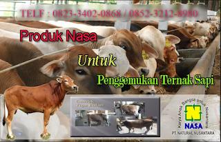 AGEN NASA DI Belitang Madang Raya Ogan Komering Ulu Timur - TELF 082334020868