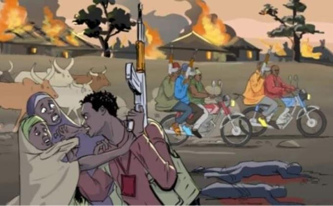 NEWS : Eleven killed by gunmen in broad daylight in Katsina