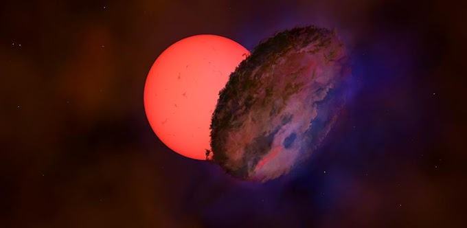 Giant star ⎼ 100 times larger than the Sun