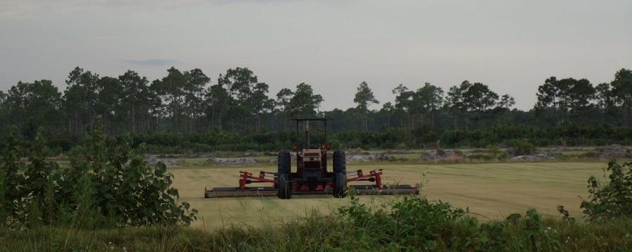 Trabajando la agricultura en el Babcock Ranch