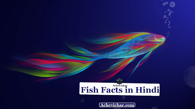 Fish Facts image in hindi