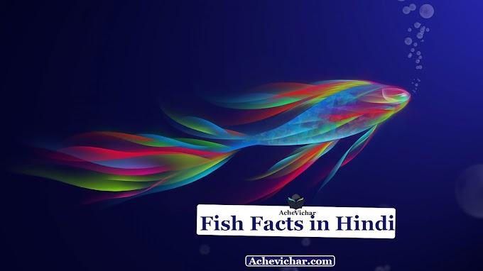 मछलियों के बारे में रोचक तथ्य - Facts About Fish in Hindi