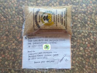 Benih padi yang dibeli SUMARNO Karanganyar, Jateng. (Sebelum packing karung ).