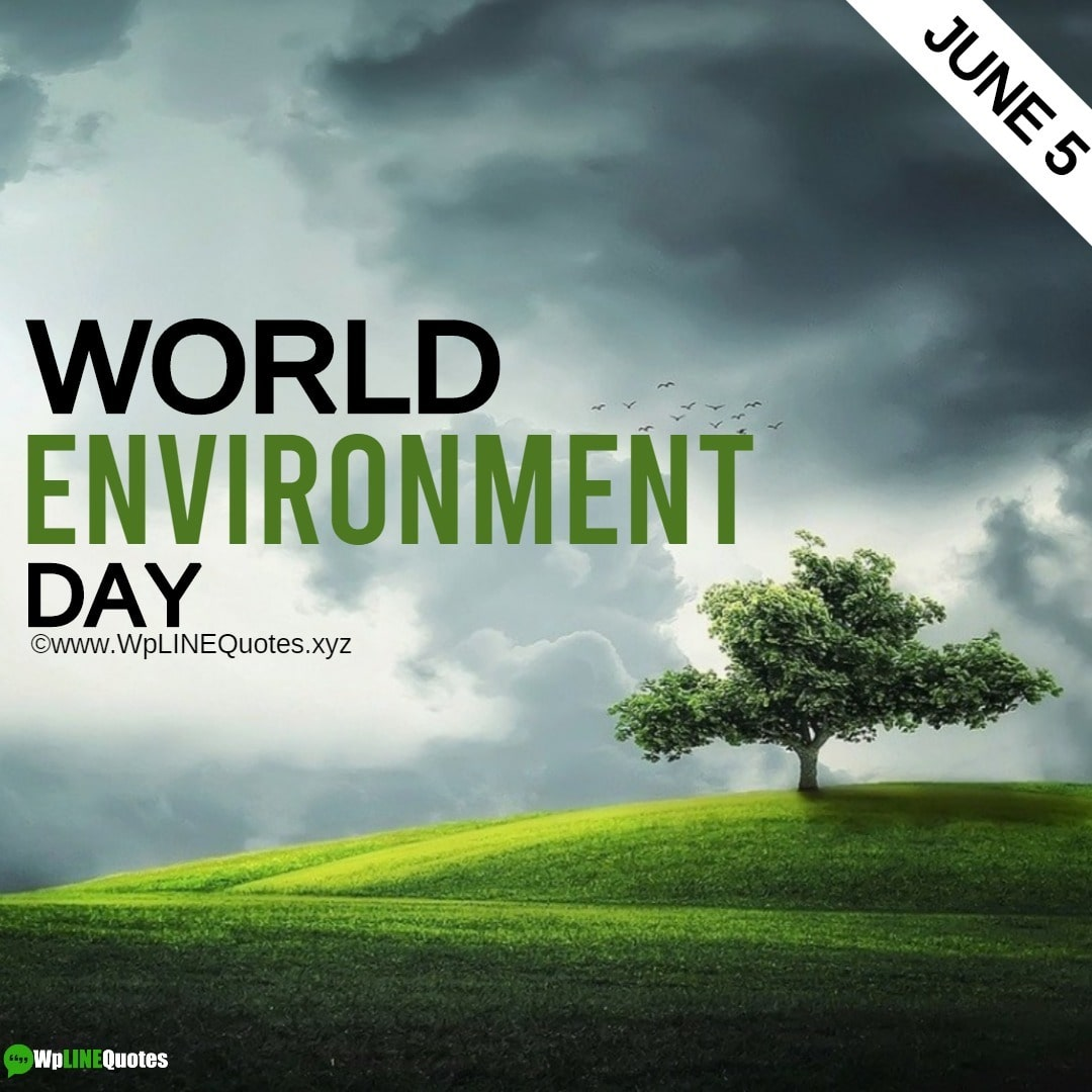 World Environment Day Images, Pictures, Photos, Wallpaper