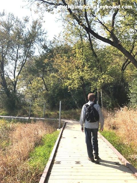 Walking the boardwalk through the marsh.