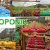67 istilah bidang pertanian
