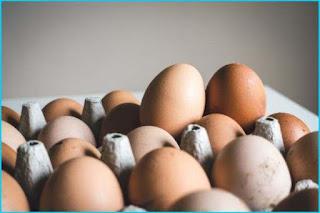 Harga Telur Hari Ini dan 4 Faktor yang Membuat Harganya Naik Ataupun Turun