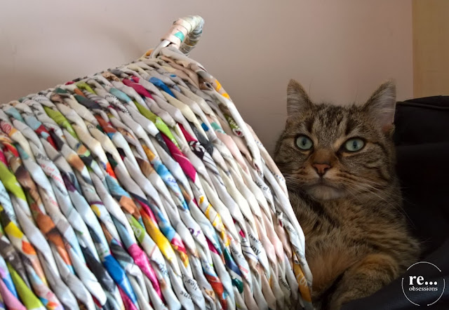 recycle, upcycle, newspaper basket, wicker paper, basket, cat, koszyk, papierowa wiklina, kot