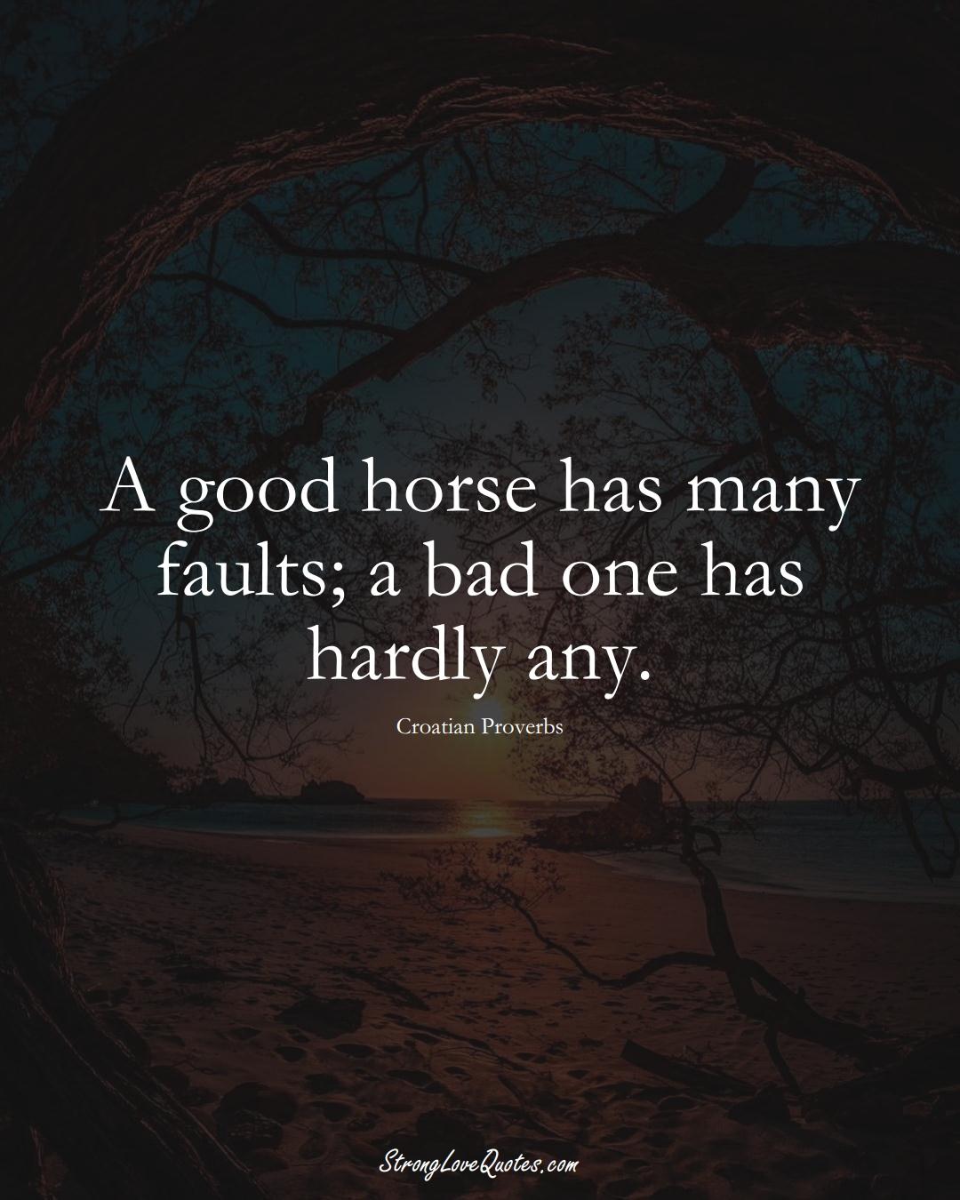 A good horse has many faults; a bad one has hardly any. (Croatian Sayings);  #EuropeanSayings