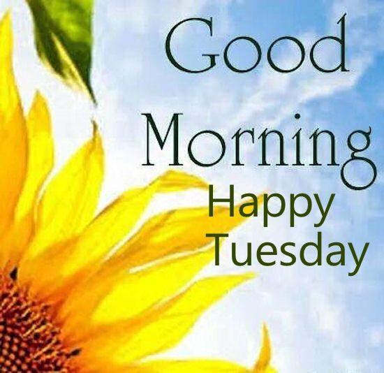 ImagesList.com: Happy Tuesday 1