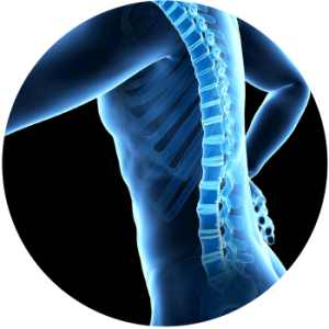 health check up find shoulder and lower back pain