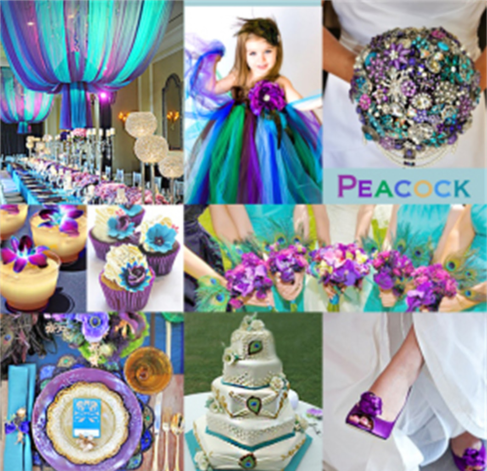 Color Ideas For Weddings: Angee's Eventions: Peacock Themed Wedding