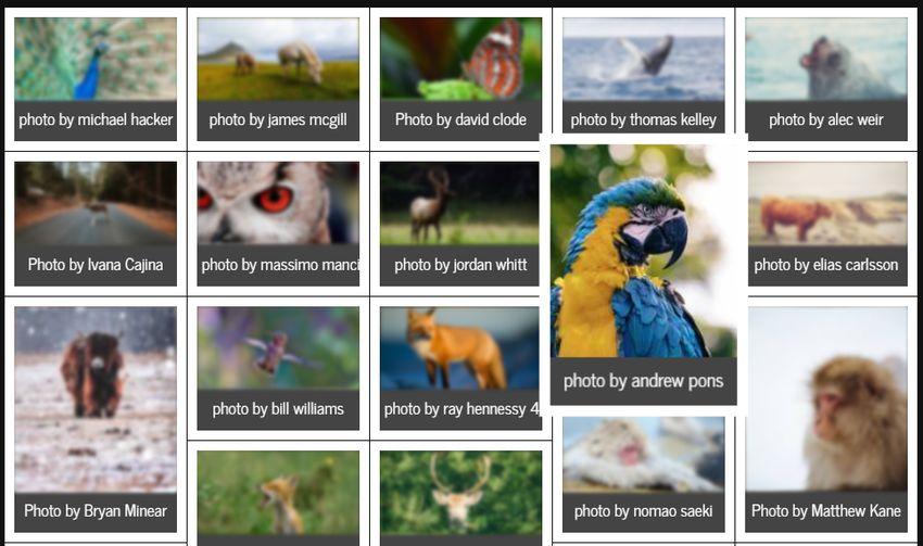 jquery-gallery-grid-plugin-nanogallery-4.jpg-十分強大的 jQuery 相簿畫廊外掛﹍nanogallery2
