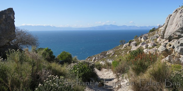 From Elsie's Peak across False Bay