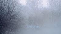 «Σινιάκι»: Η παγωμένη ομίχλη που «εξαφανίζει» τη Φλώρινα