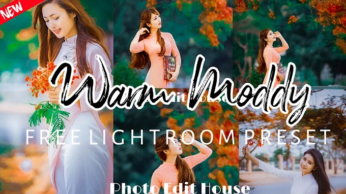 How to Edit Warm Moody Presets In Lightroom Mobile | Free Presets | Lightroom Mobile Preset Tutorial 2019