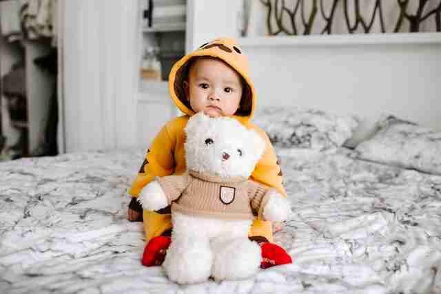 Teddy Bear Images With Cute Boy