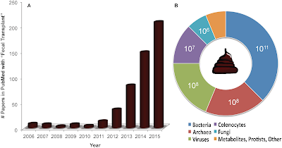 Rise in in publications about fecal microbiota transplants. Image credit: http://journals.plos.org/plosbiology/article?id=10.1371%2Fjournal.pbio.1002503