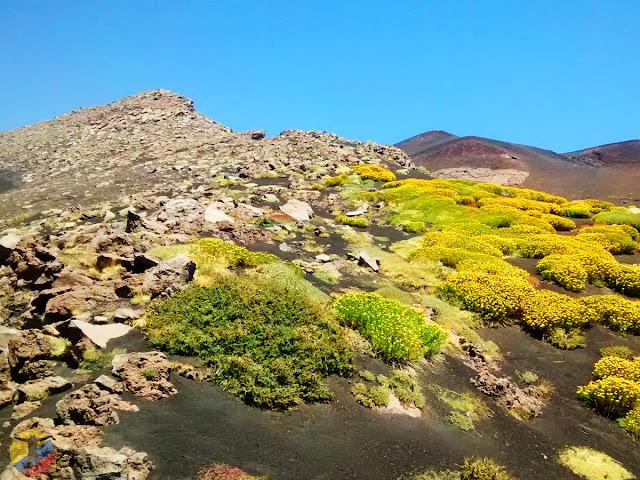 Vistas teleférico Etna