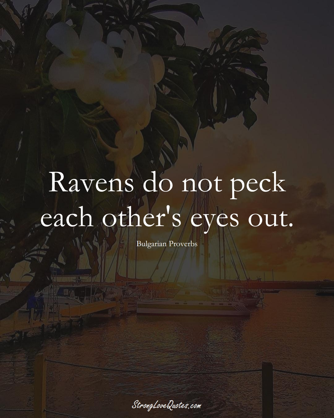 Ravens do not peck each other's eyes out. (Bulgarian Sayings);  #EuropeanSayings