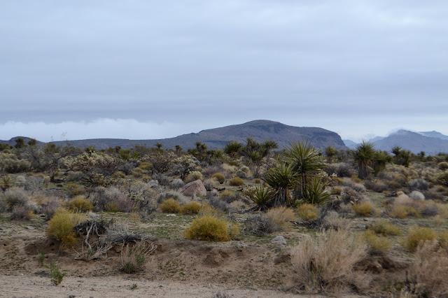 Tortoise Shell Mountain ahead