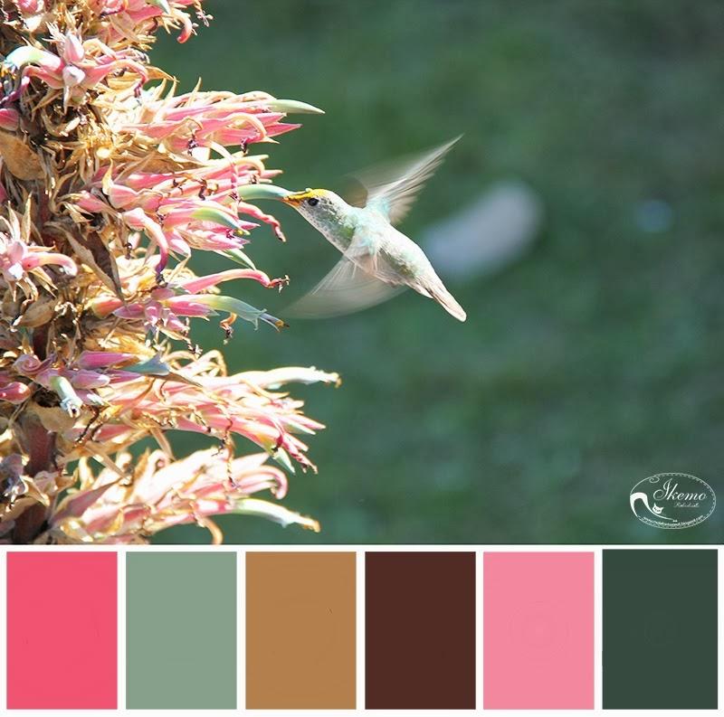 http://blogprzyda-sie.blogspot.com/2014/02/wyzwanie-7-kolory-z-lotu-ptaka.html