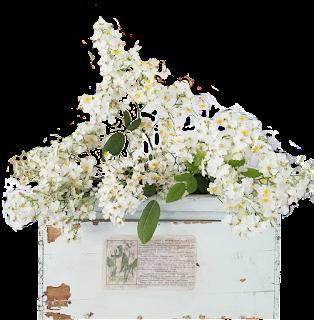 Caixote com flores brancas