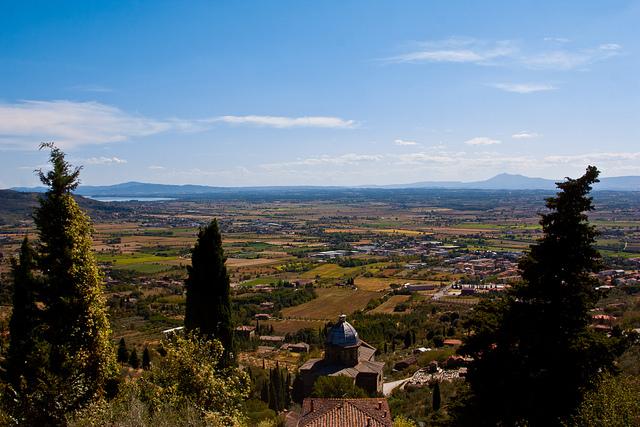 Syrah of Cortona Tuscany