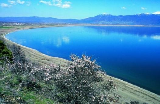 Liqeni i Ohrit