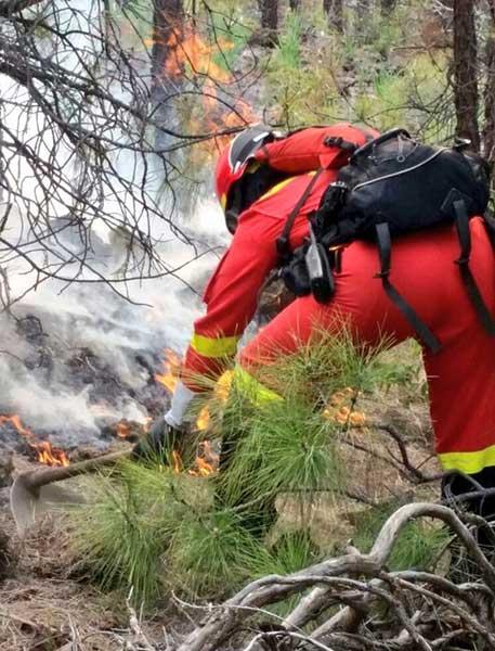 incendio forestal en Madre del Agua, sur de Tenerife