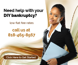 Do it yourself diy bankruptcy young gifted and black do it yourself bankruptcy petition preparation services solutioingenieria Images