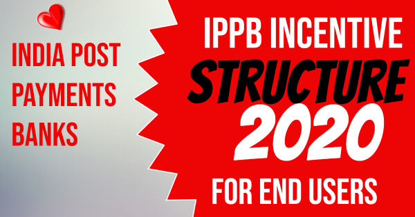 IPPB end user incentive structure 2020