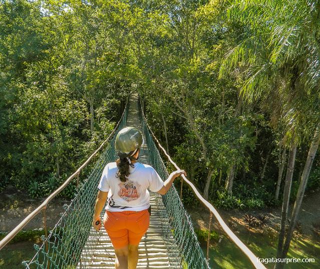 Passarela sobre a mata dá acesso à Gruta de São Miguel, em Bonito, Mato Grosso do Sul