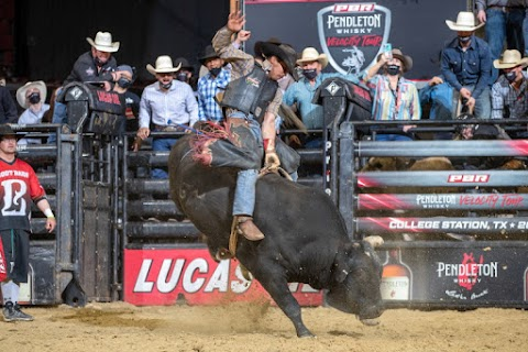 A Beginners Guide To Professional Bull Riding