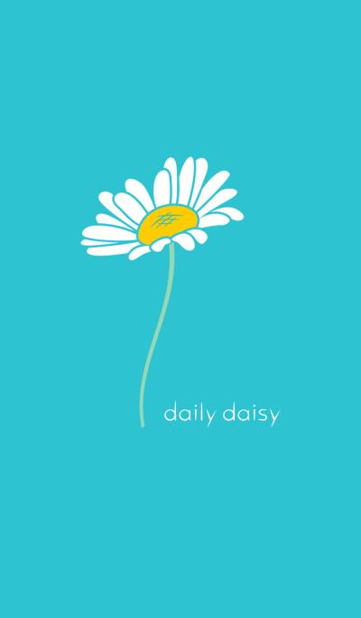 daily daisy