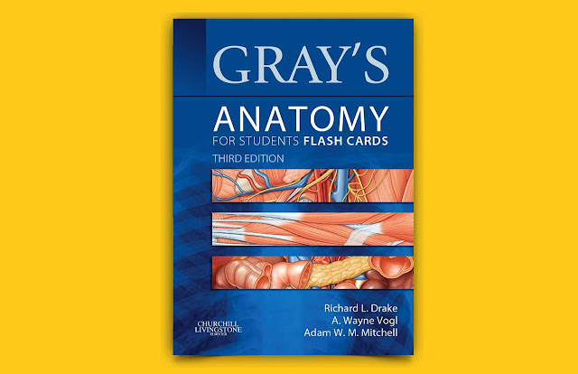 Download Gray Anatomy for Students Flash Cards Third Edition PDF for free