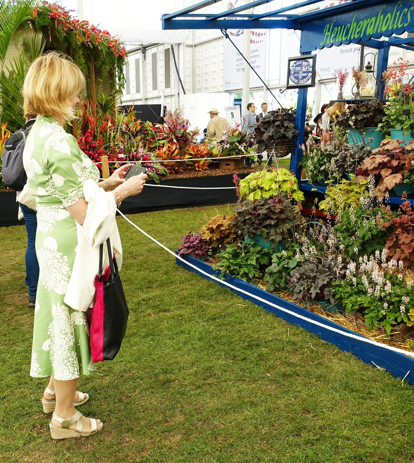 Woman in green hydrangeas print dress taking photos of heuchera at the Chelsea Flower Show