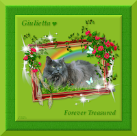 Giulietta is loved and missed