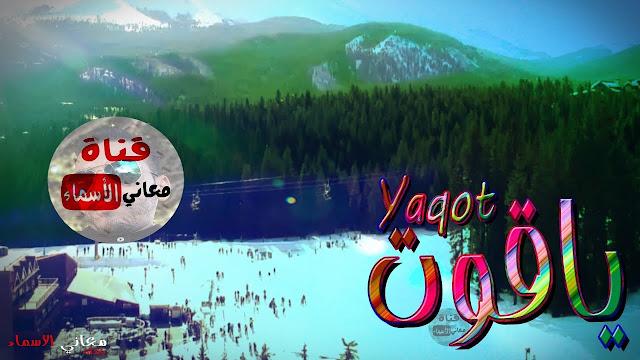 معنى اسم ياقوت وصفات حامل هذا الاسم Yaqot