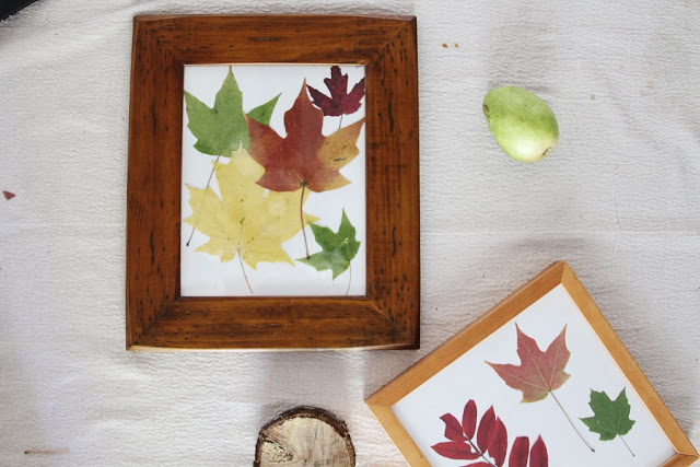 How to Preserve Leaves for Decorations