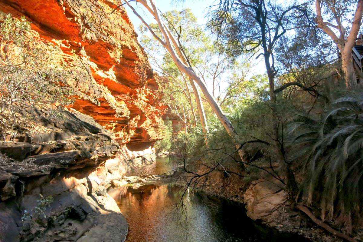 Garden of Eden in Kings Canyon in Australia images wallpapers