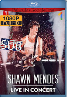 Shawn Mendes: Concierto en vivo (2020) [1080p Web-DL] [SUB] [LaPipiotaHD]