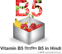 Vitamin B5 kisme hota hai in hindi, Vitamin B6benefits in hindi, Vitamin B6foods in hindi, Vitamin B6ki kami in hindi, Vitamin B6kisme paya jata hai in hindi, Vitamin B6ke fayde in hindi, Vitamin B6tablets for skin whitening in hindi, Vitamin B6benefits for skin in hindi, Vitamin B6kya khana chahiye in hindi, Vitamin B6kis fruit me paya jata hai in hindi,  Vitamin B6kis fruit me hota hai in hindi, Vitamin B6ke liye kya khana chahiye in hindi, viamin E ke barein mein hindi, Vitamin B6kya hai in hindi, Vitamin B6ke avashyakta in hindi, Vitamin B6kaise milta hain hinndi,  Vitamin B6ki kami se kya hota hai  in hindi,  Vitamin B5ke fayde in hindi, Vitamin B6ke karya in hindi,  विटामिन ए की उपयोगिता-Utility of Vitamin A  clic here » विटामिन-बी (Vitamin-B, Vitamin B Complex)  clic here » विटामिन बी2 मतलब शरीर में फूर्ति-Vitamin B2 Means Energy  clic here » विटामिन बी3 बनाये बुढ़ापे तक जवान- Vitamin B3 keep young till old age  clic here » विटामिन-बी5 (Vitamin B5)  clic here » विटामिन सी की आवश्यकता और कमी-Vitamin C need & deficiency  clic here » विटामिन-डी (Vitamin-D)  clic here » स्वस्थ स्वास्थ्य के लिए जरूरी Vitamin B12  clic here »विटामिन ई के अनेक फायदे-Vitamin E has many benefits  clic here » विटामिन K के लिए घरेलू उपाय -Home remedies for Vitamin-K