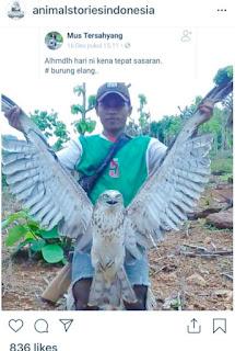 Tim Reskrim Polres Bima Kota Interogasi Pelaku Perburuan Satwa yang Dilindungi