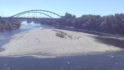 Isleta debajo del Azud Ebro Zaragoza