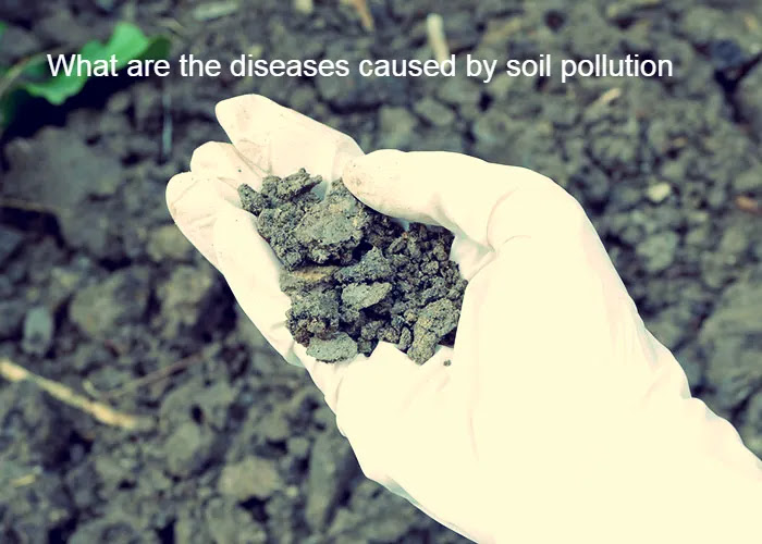 What are the diseases caused by soil pollution