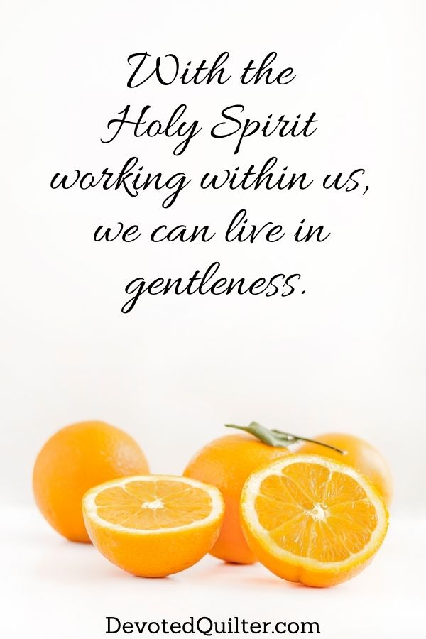 With the Holy Spirit working in us, we can live in gentleness | DevotedQuilter.com