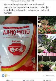 Baja Ajinamoto Untuk Tumbuhan
