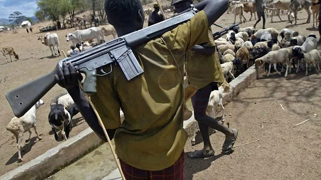 Tension in Delta communities over fresh attack by herdsmen